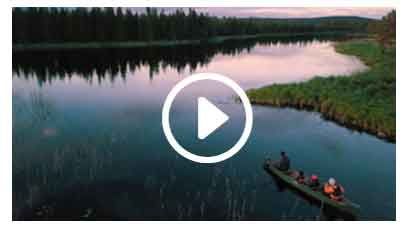 Bäversafari i kanot